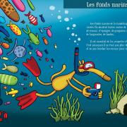 double page fonds marins